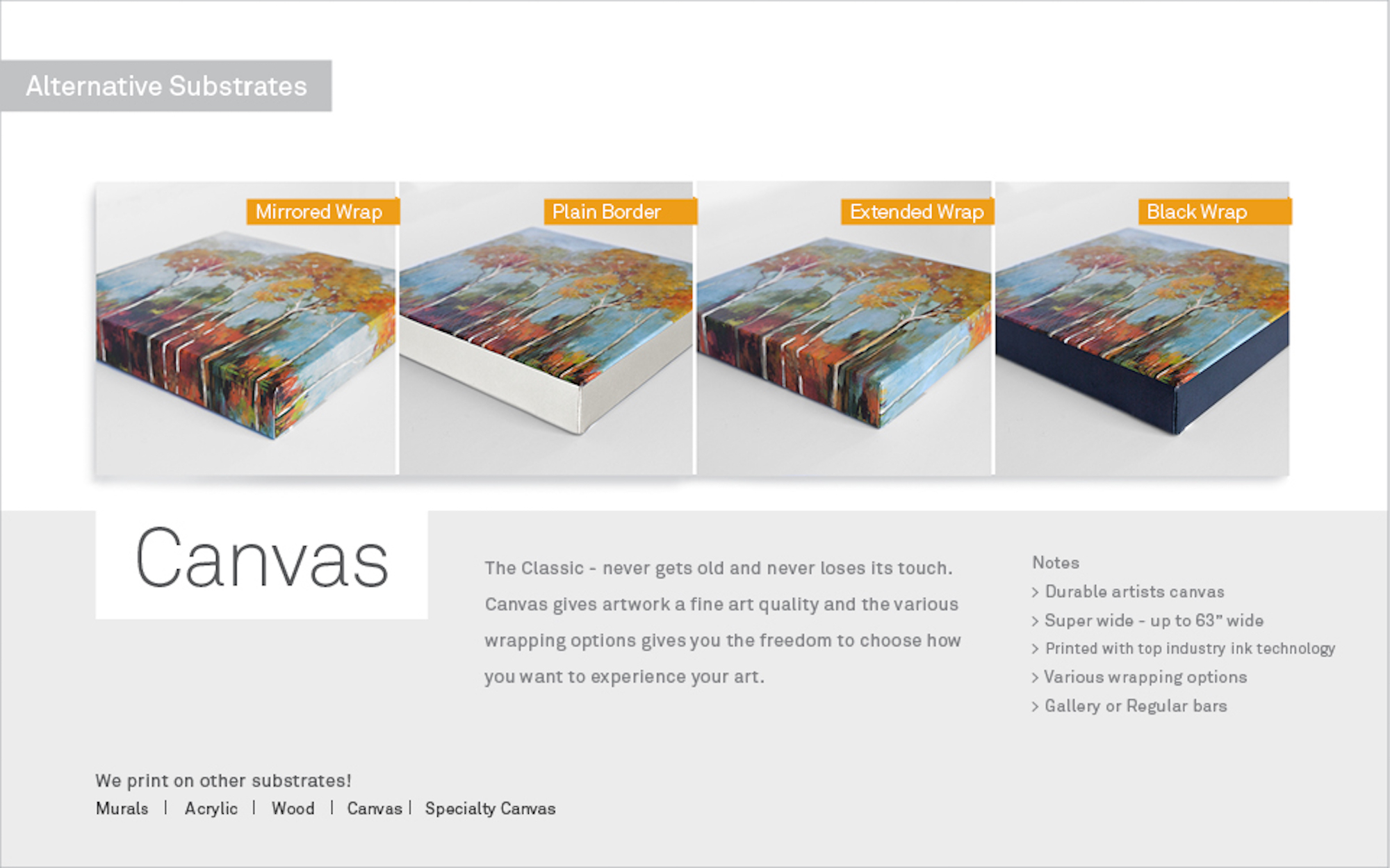WebsiteSubstratesv6_Canvas