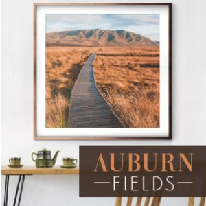 Aubrun Fields