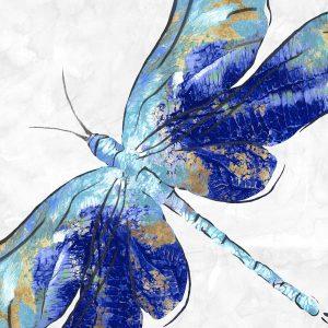 Bugs - Butterflies